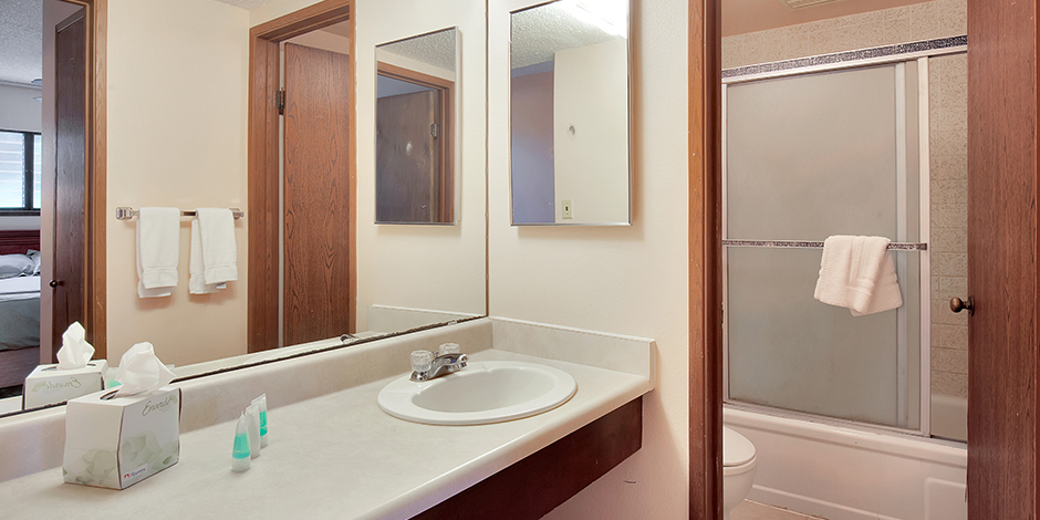 Bathroom within a 1-Bedroom Oceanfront at Molokai shores