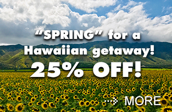 Enjoy 25% off during Castle's Spring Weekend Sale